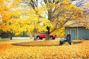 Fall Tips For Your Texas Home